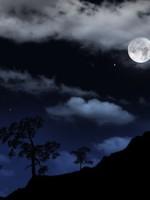 notte-fonda_525